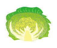 オーガニック野菜アドバイザー